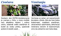 entex-biodekoracija-m